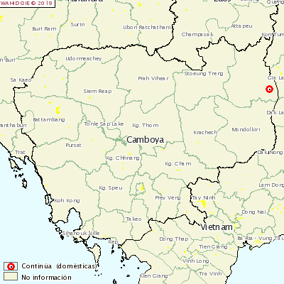 PSA Cambodja