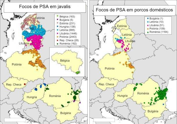 Mapa de focos declarados na Bélgica, Bulgária, Estónia, Hungria, Letónia, Lituânia, Polónia, Rep. Checa e Roménia em 2018 (Fonte RASVE-ADNS).